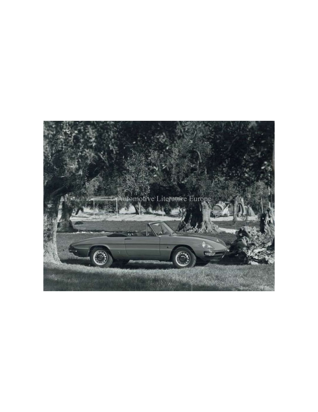 1967 ALFA ROMEO SPIDER 1750 VELOCE PRESS PHOTO